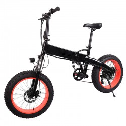 Fat-Bike elettrica...